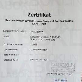 Zertifikat JLPP Inka
