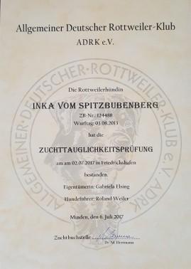 ZTP Urkunde